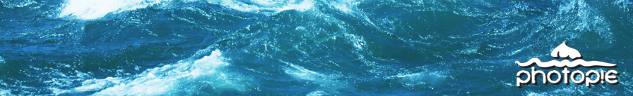 nauticalheader.jpg